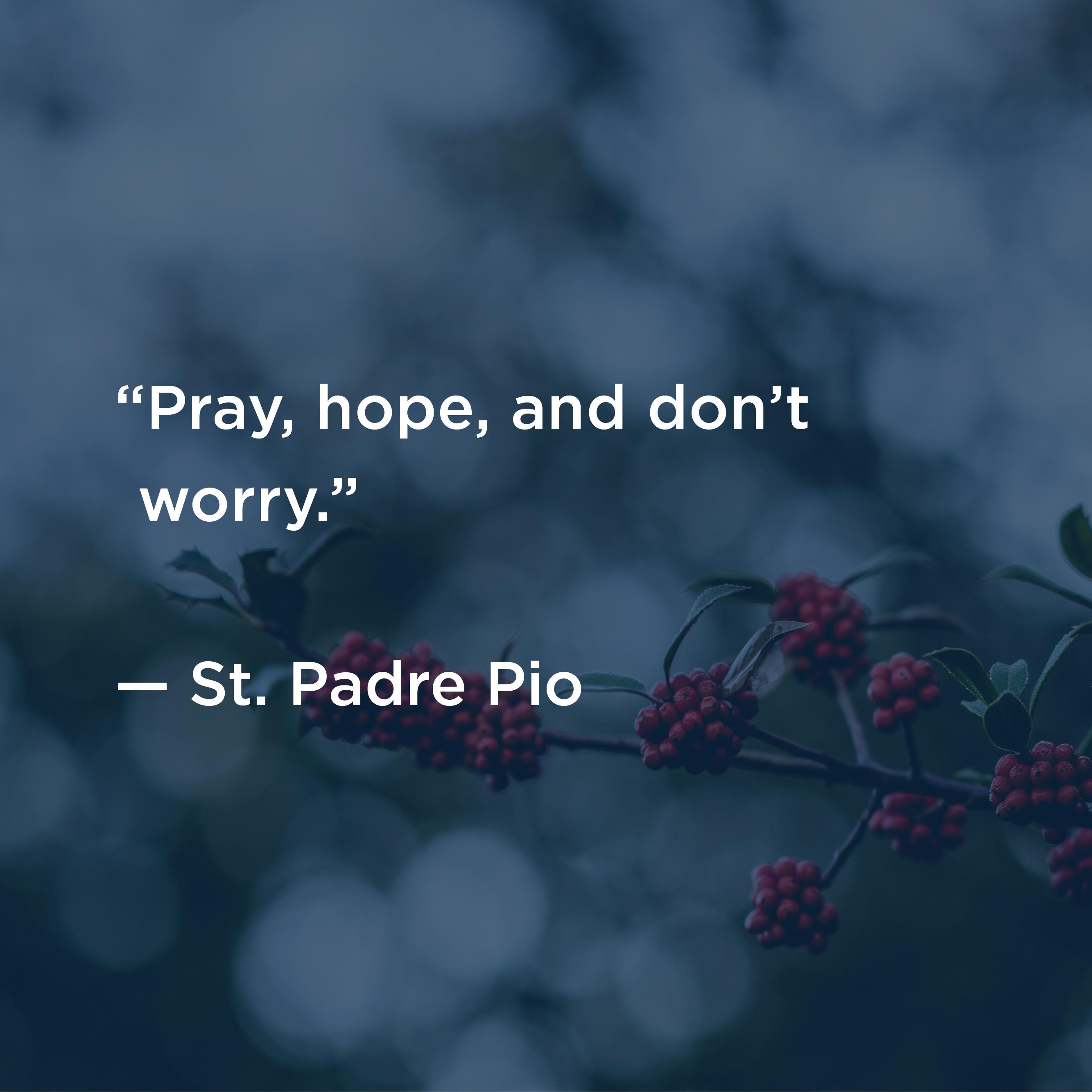 Hope And Great Joy Best Advent Ever Dynamic Catholic